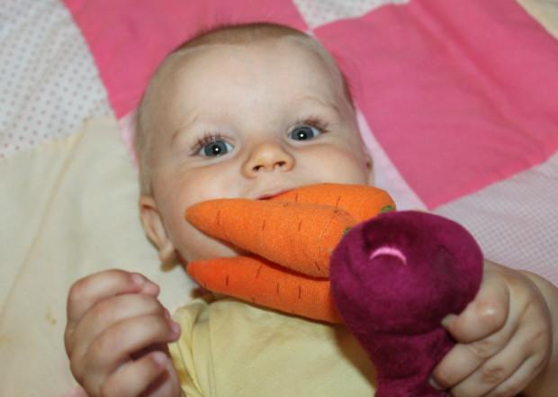 Muutama porkkana suussa