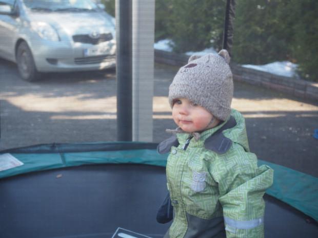 Milo trampoliinilla