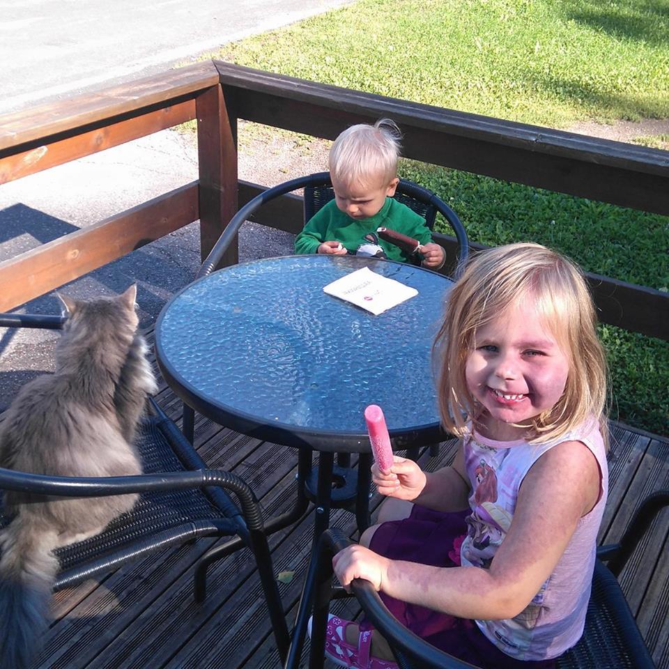 lapset ja kissa