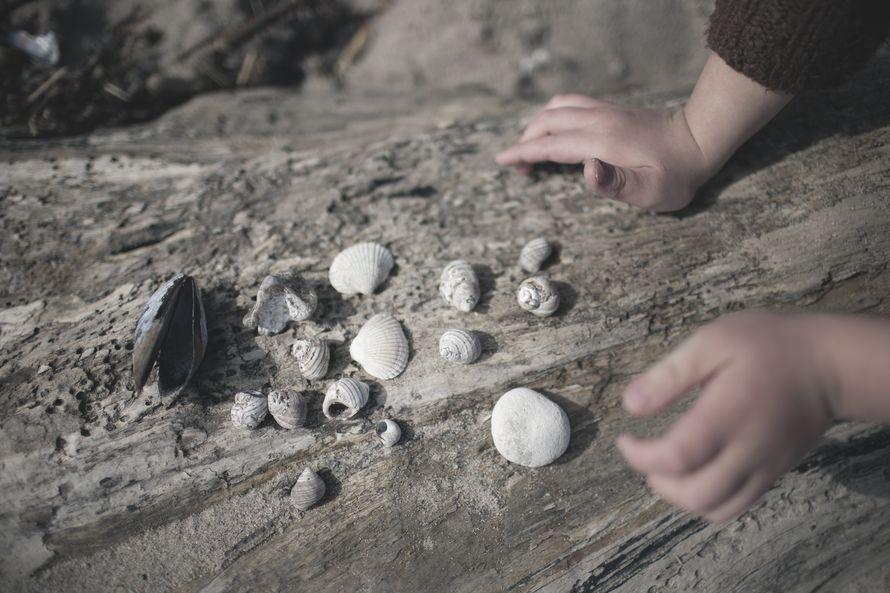 Aarteita alkaa löytyä. Loppupäivästä lasten housut roikkuvat puolitangossa kivien ja simpukoiden painosta.