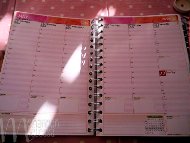 viikkonakyma_pysty_kalenterissa