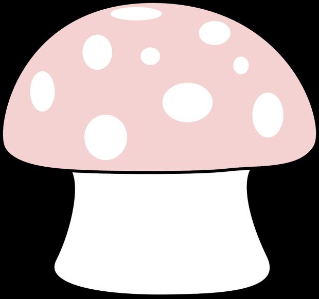 mushroom-304245_1280