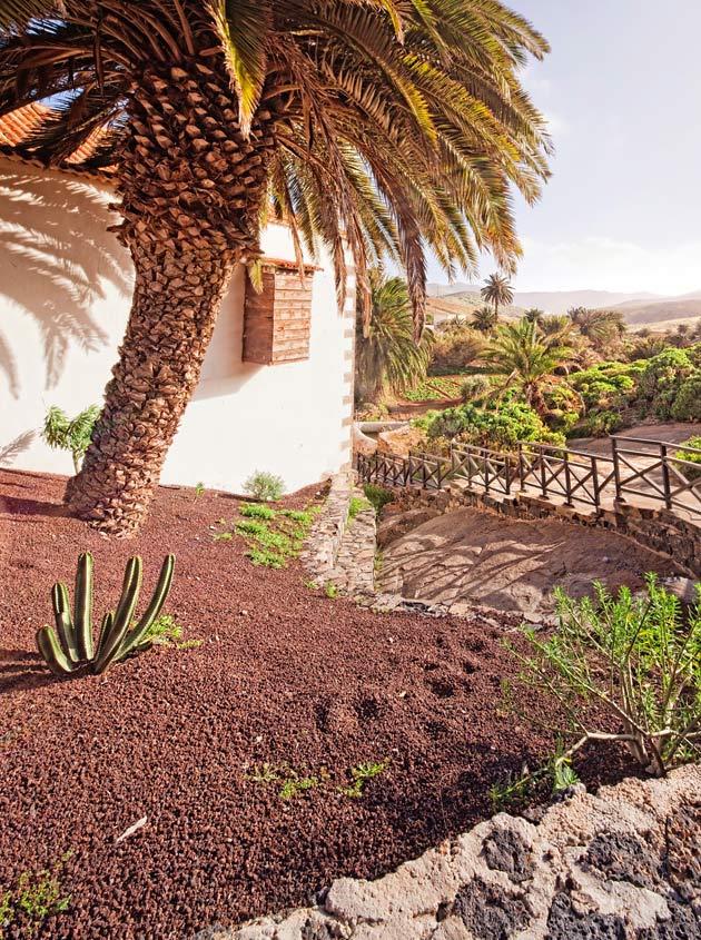 Kanariansaarten Fuerteventura