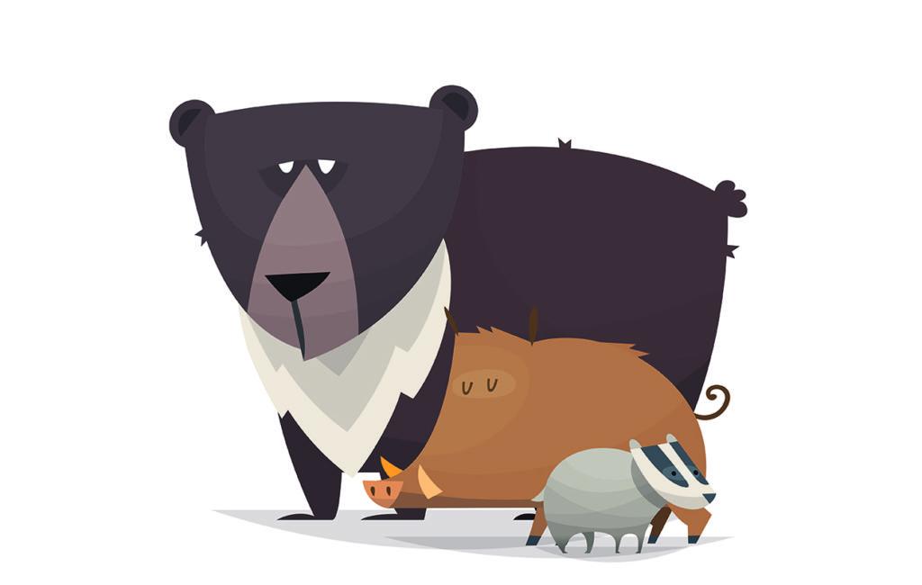 Karhu, villisika ja mäyrä