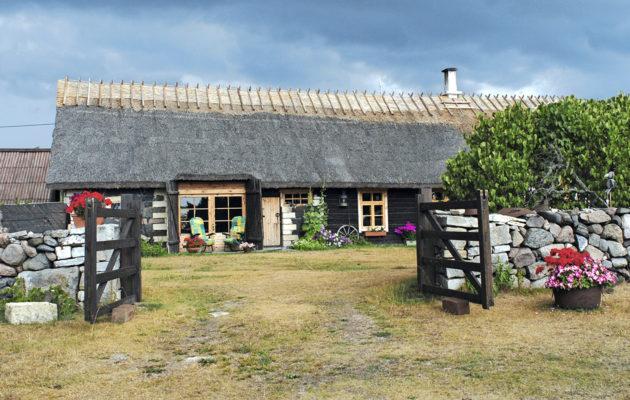 Muhun saari, Viro