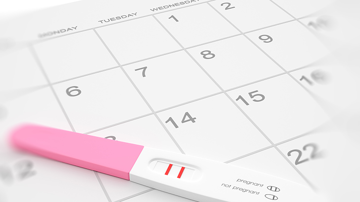 Kuvassa positiivinen raskaustesti raskausviikolla 2.