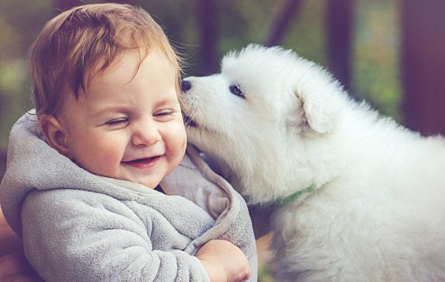 Suloiset kuvat lapsista ja eläimistä.