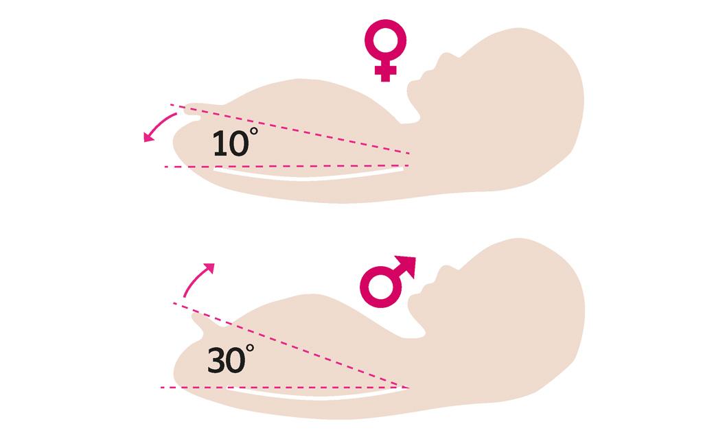 Nub-teoria kertoo sikiön sukupuolen genitaalikyhmyn ja selkärangan välisen kulman suuruudesta.