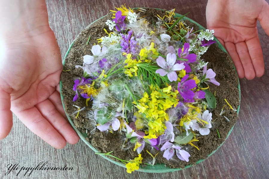 kasvit, kukat, luonnonmukaiset kasvit
